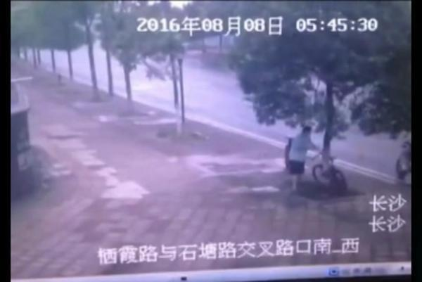 chinese man cut down a tree to steal a bicycle.jpg